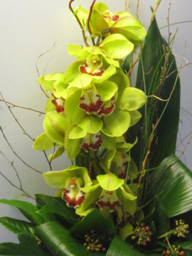 blumen zum geburtstag blumen pflanzen floristik dekoration. Black Bedroom Furniture Sets. Home Design Ideas