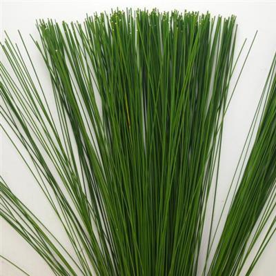 Flexi gras 1 bund bl mchen floristik versand f r blumen for Floristik versand