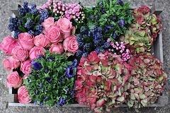 Blumenversand versand f r blumen pflanzen floristik for Floristik versand